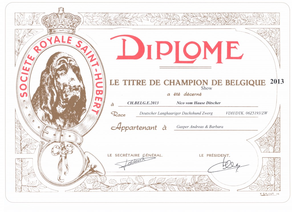 Champion-Belge-Nico-2013.jpg