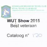 WUT Show 2015 Bester Veteran
