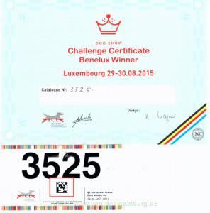 Challenge-Cert-Lux-2015_Page_1