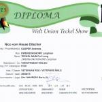 WUT Diplom 2015 Nico vom Hause Ditscher FCI