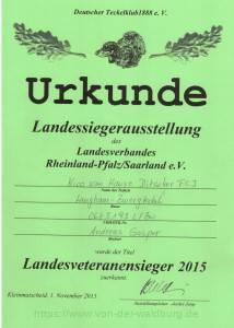 Urkunde Landes-Veteranen-Sieger
