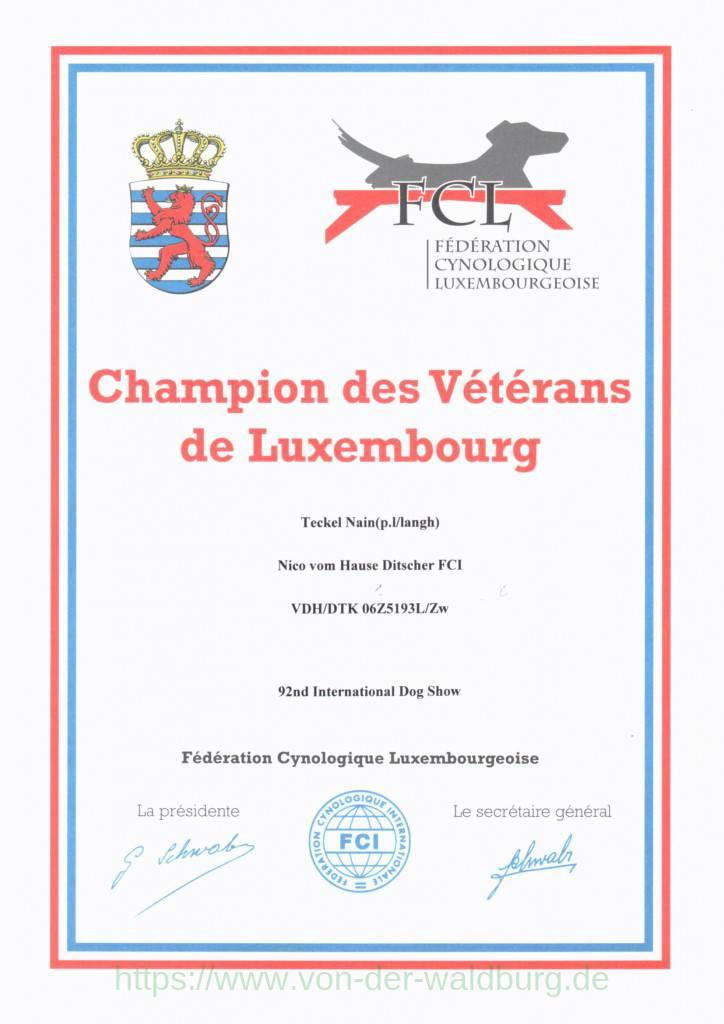 Champion des Vétérans de Luxembourg