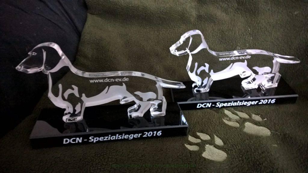 DCN - Spezialsieger 2016