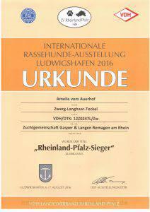 Rheinland-Pfalz-Sieger 2016