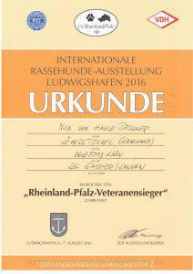 Rheinland-Pfalz-Veteranen-Sieger-2016
