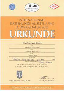 Urkunde IRA Ludwigshafen 2016