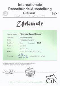 Die Urkunde Gießen 2016